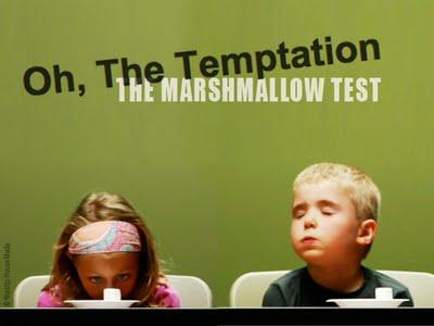 marshmallow test debunked