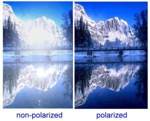 polarized3