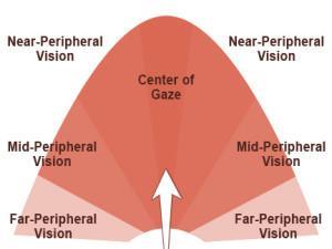 6_Peripheral-Vision-300x225