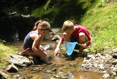 creekpic